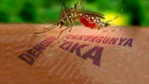 Llega al país el virus Zika; reportan primer caso